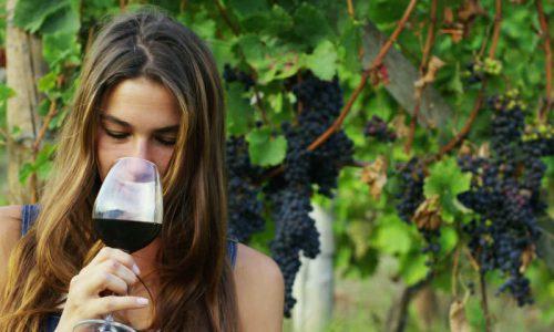Dall'uva al vino e degustazione-Ginosa-3