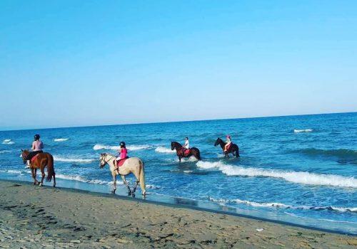 HorseVillage-Ginosa-2