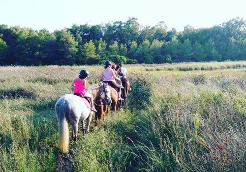 HorseVillage-Ginosa-3